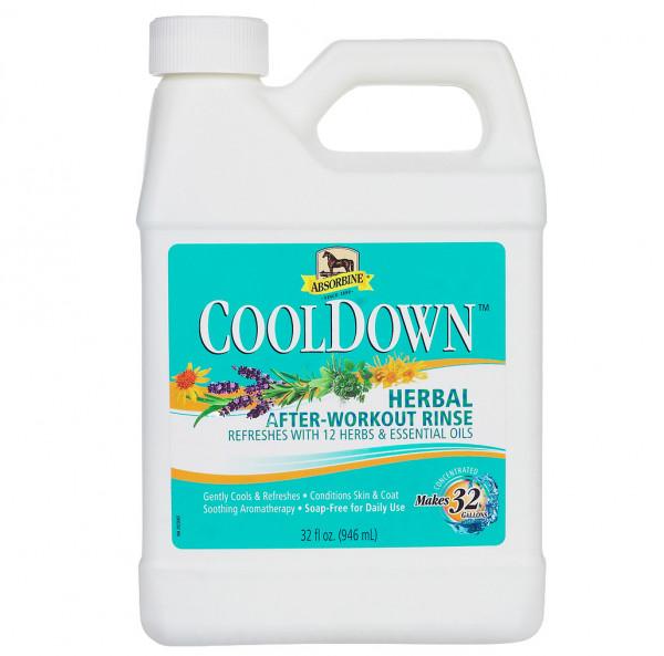 Absorbine Cool Down Waschlotion 946ml