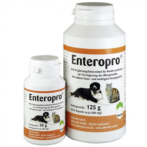 Enteropro Wegerich-Samen Kapseln 500mg 250 Stk.