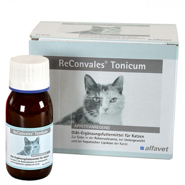 ReConvales Tonicum Katze 6x45ml Rekonvaleszenz