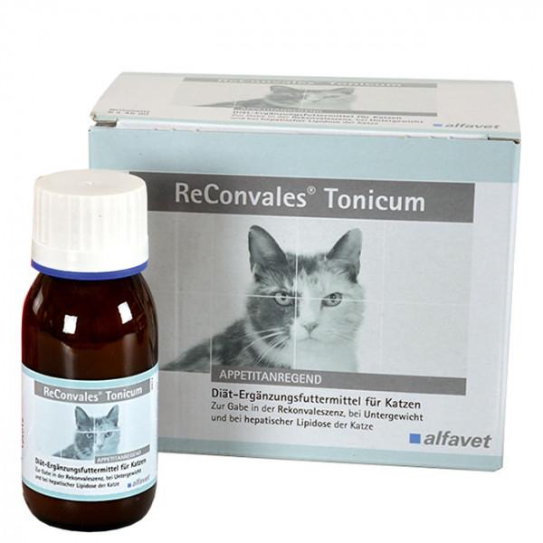 ReConvales Tonicum Katze 3x45ml Rekonvaleszenz